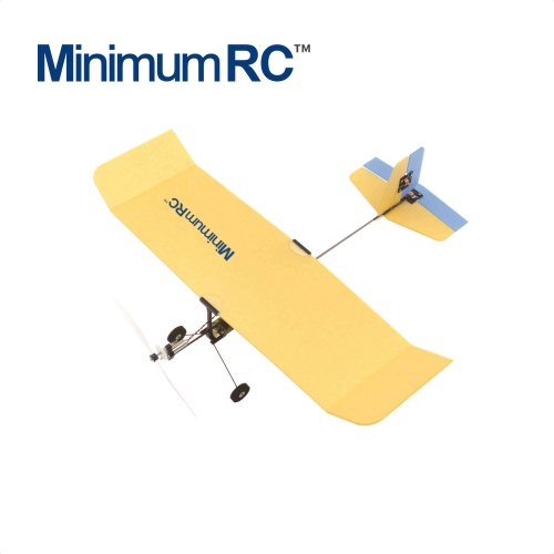 Bumble Bee Micro Indoor RC Airplane